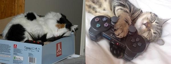 Atari kutularına sığmaktı tüm derdimiz, şimdi joystickler oldu yastığımız