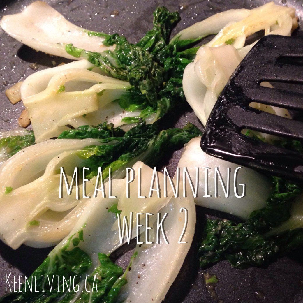 Meal planning wk2