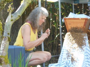 "On my knees ""conversating"" with my bees."