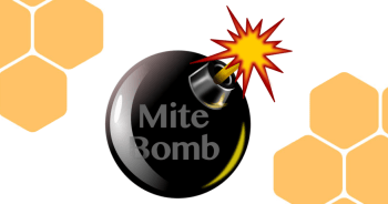 mite bomb treatment free beekeeping