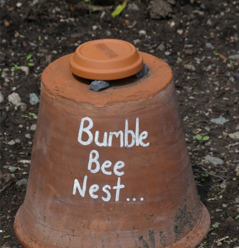 Overturn a pot and on the drainage hole on top, place a small saucer propped up so a bee can exit, but weather is kept out