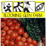 blooming glen farm
