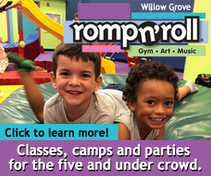 Romp N Roll Willow Grove