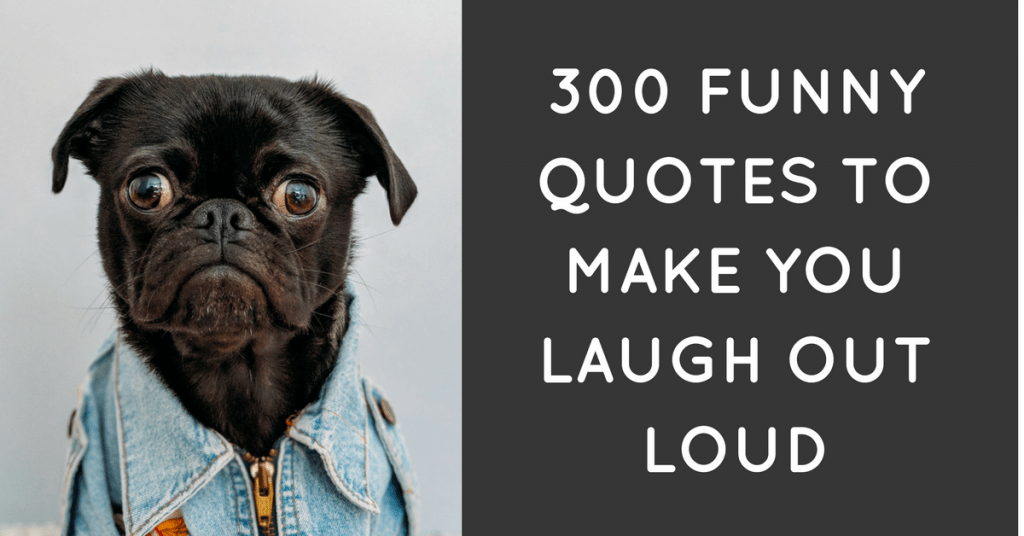 300 funny quotes to