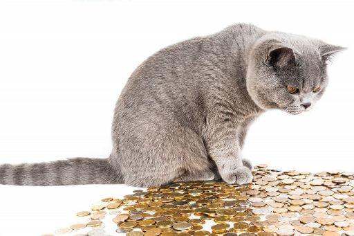 финансовый гороскоп копилке не друг