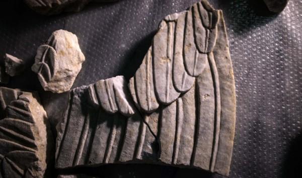 Amphipolis Sphinxes wings