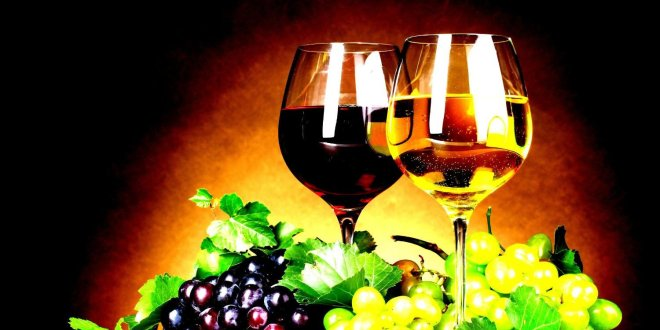 Greece's wineries open cellars on European Wine Tourism Day, Nov 11