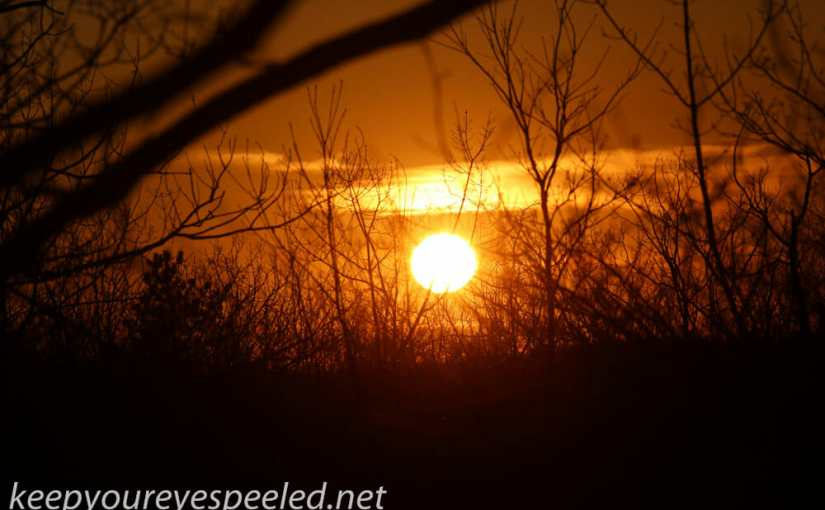 Another Sign Of Spring, The Sun Moving into the Northern Sky.