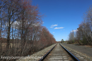 railroad tracks (14 of 21)