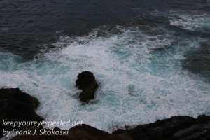 Phillip Island-18