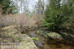 Weatherly railroad Penrose hike   April 23 2016-27