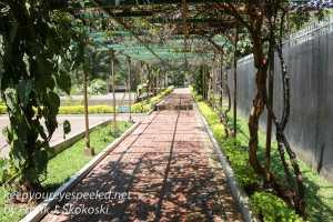 kigali-genocide-memorial-grounds-4