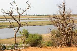 botswana-chobe-safari-landscape-29