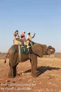 zimbabwe-elephant-ride-18
