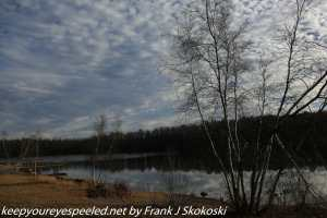 leafless birch trees and clouds surrounding Lake Irena