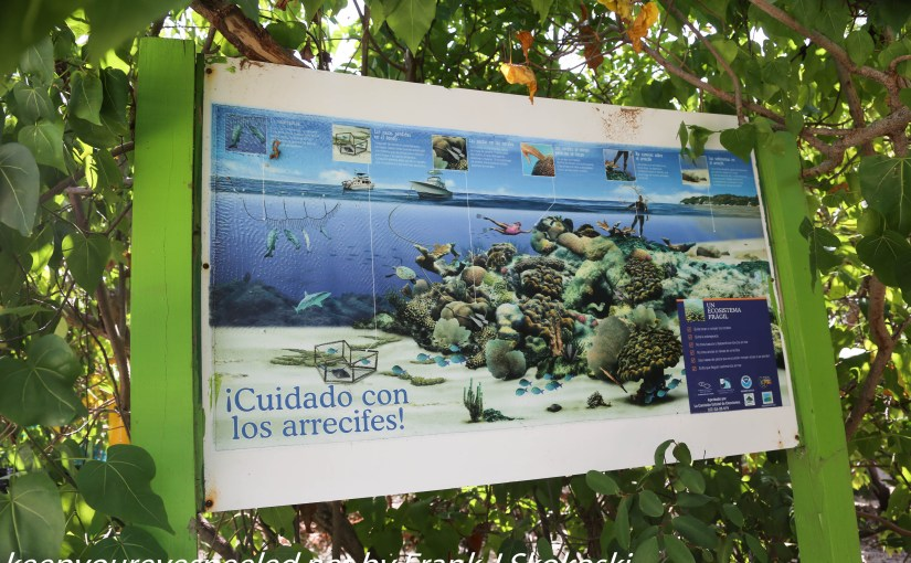 Puerto Rico Day Four:  A Short Stay On  Gilligan's Island.