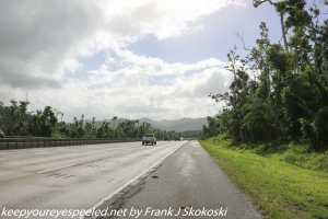 trees and clouds on Highway 52 Puerto Rico