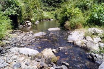 45452597-landelijk-streams
