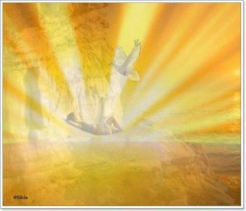 Licht en Geest alom