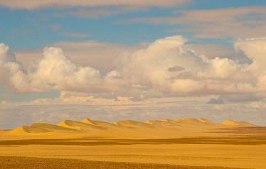 De woestijn zal geven