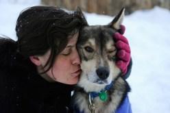 Iditarod αγώνες ελκυθρού 2012