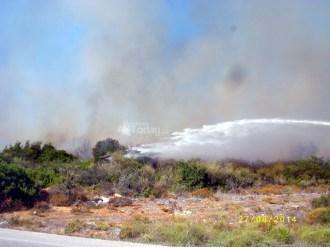 Πυρκαγιά κοντά στην Ι.Μ Αγίου Ανδρέα στα Τραυλιάτα