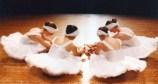 Νέο τμήμα κλασσικού χορού της ΚΕΔΗΚΕ