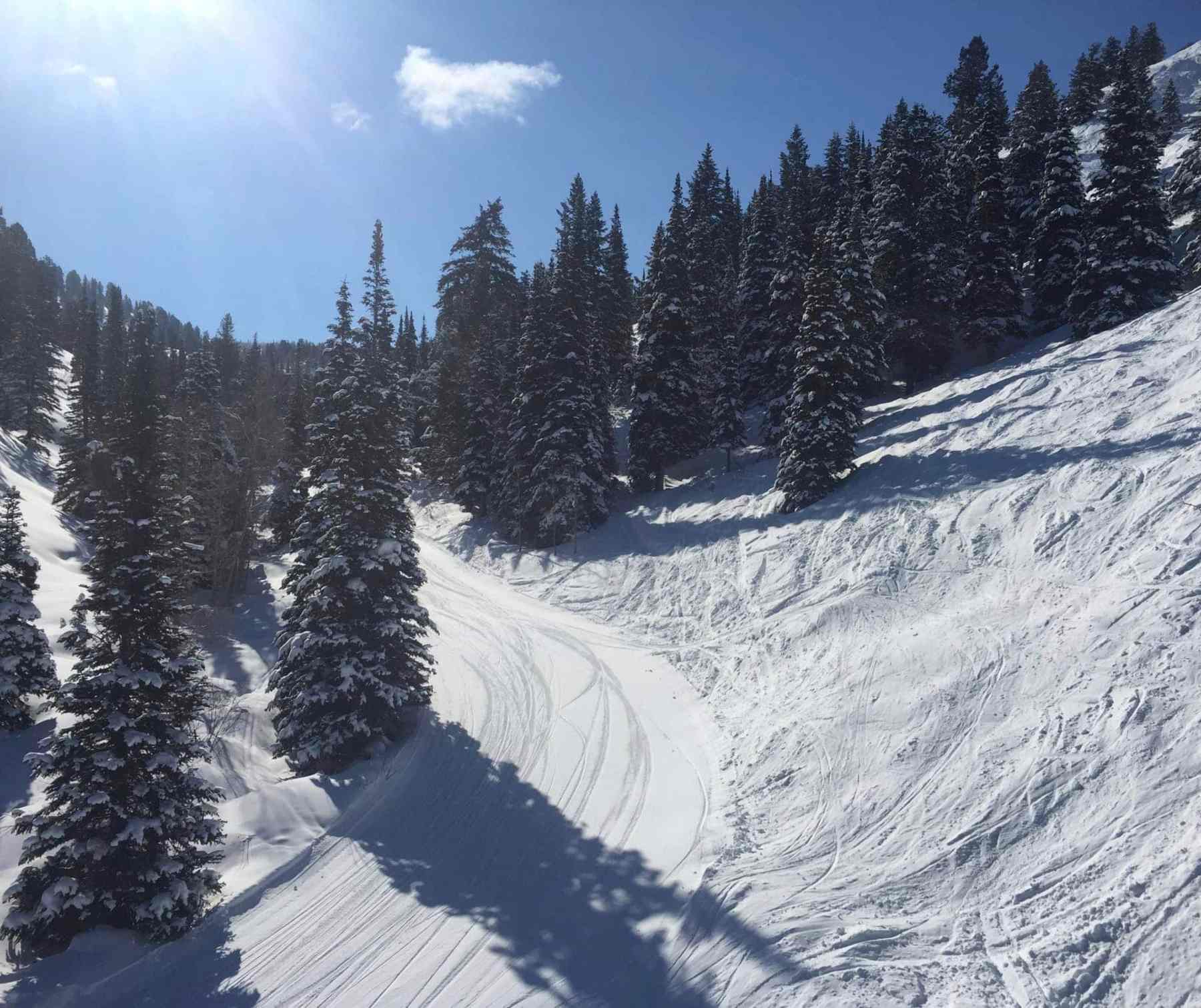 Such a beautiful day and great snow conditions!