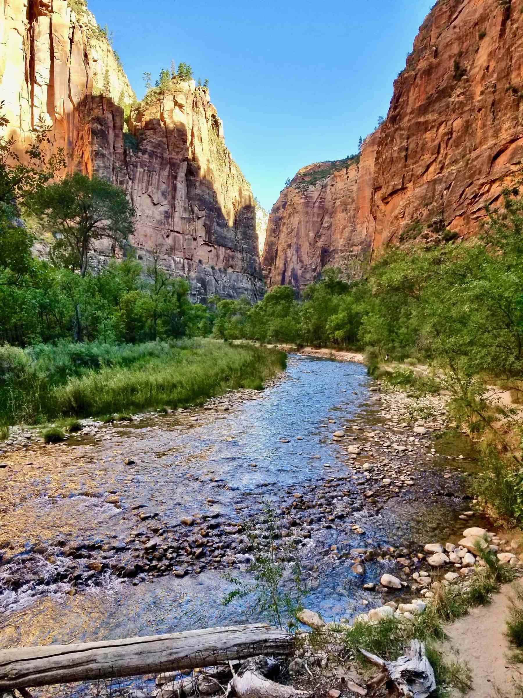 Zion Canyon - Zion National Park