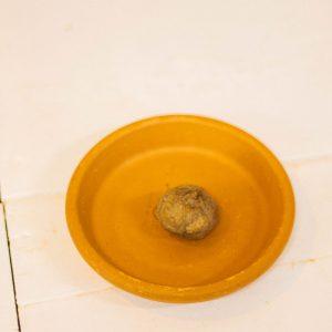 Stephania erecta small