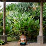Top Ubud Accommodation for under $200