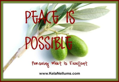 peace is possible3