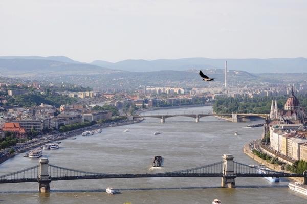 Citadel'den Tuna Nehri