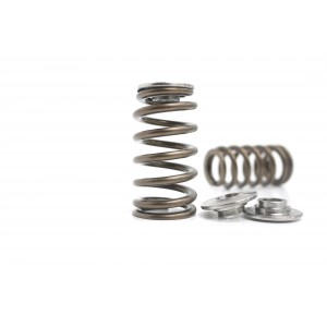 KVS1847-BT High Performance Valve Spring & Titanium