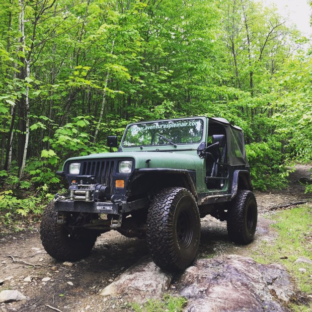 nature, jeep car