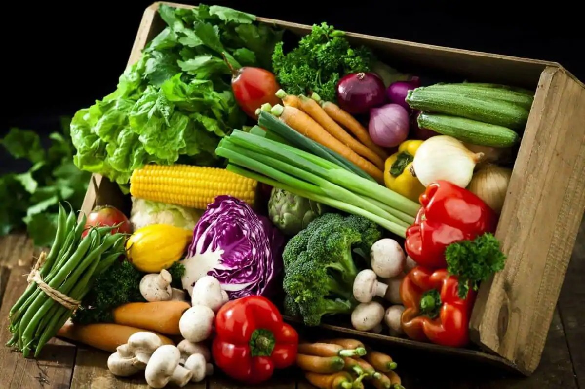 What Soil Vegetables Raised Garden