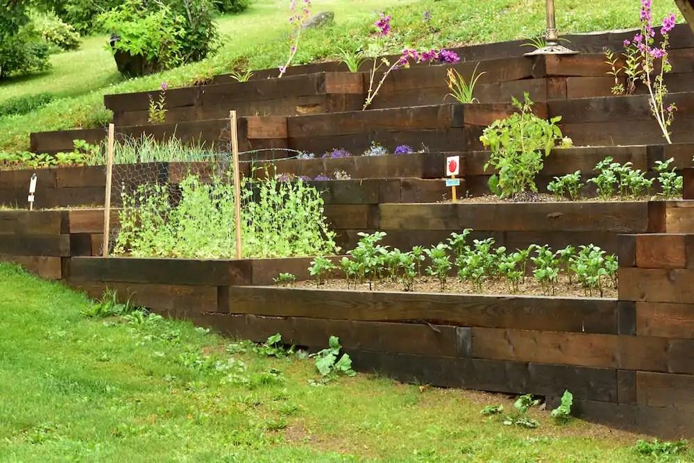 Potting Mix Vs Raised Bed Soil Kellogg Garden Organics
