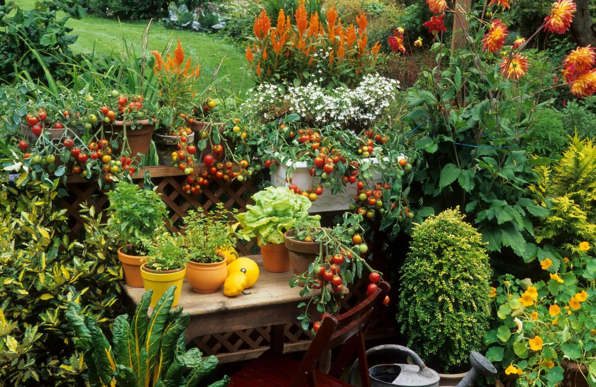 garden patio ideas kellogg garden