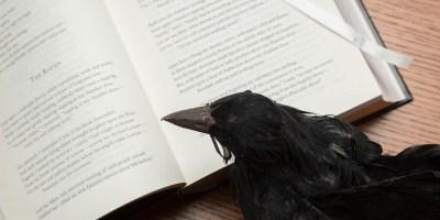 My Raven Reading The Raven