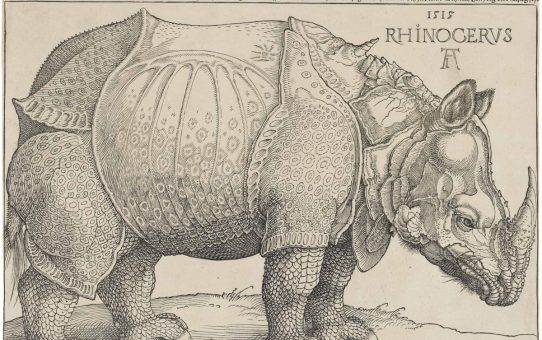 Albrecht Dürer's Rhinoceros: Where Science and Imagination Meet