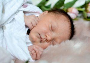 Harrow Family | Newborn | Charlotte NC