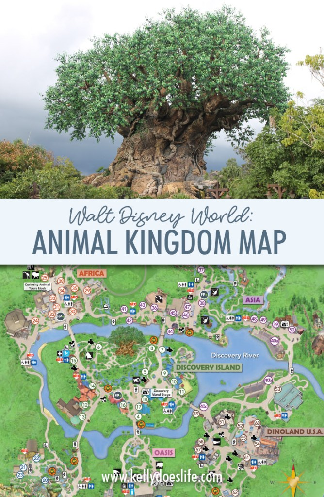 Animal Kingdom Map Walt Disney World - Updated July 2019! on map of last night, map of restrepo, map of first landing, map of sea world san antonio, map of butler chain of lakes, map of arthur, map of universal studios orlando, map of nickelodeon suites resort, map of tammy, map of serenity, map of downtown disney, map of wizarding world of harry potter, map of espn wide world of sports complex, map of epcot, map of the kentucky derby, map of disney world, map of blizzard beach, map of disney village, map of typhoon lagoon, map of hollywood studios,