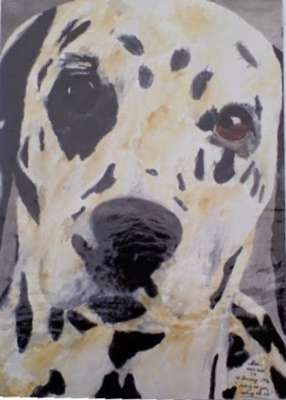 Dalmation pet portrait - water colours - Kelly Goss