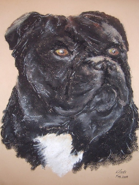 Staffordshire bull terrier pet portrait - Kelly Goss