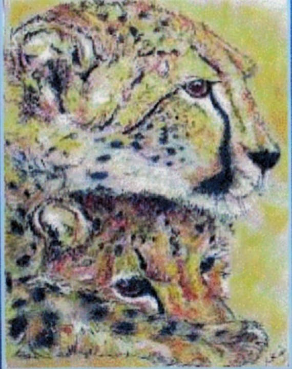 Cheetah and cub - chalk pastels - Kelly Goss