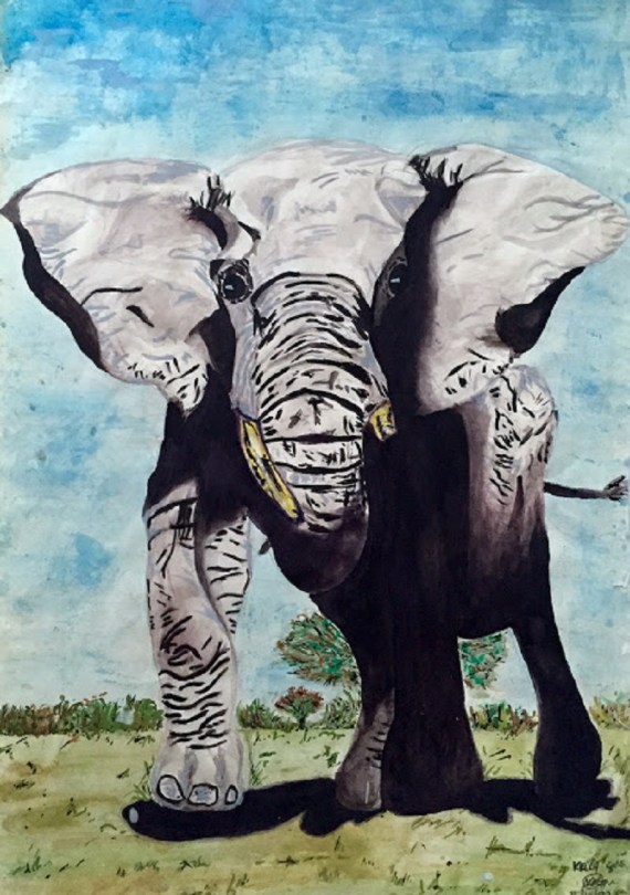 Elephant in watercolours - Kelly Goss