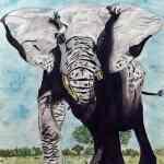 Elephant in watercolours - Kelly Goss