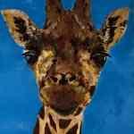 Giraffe - acrylics on canvas - Kelly Goss