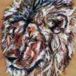 Lion - chalk pastels - Kelly Goss
