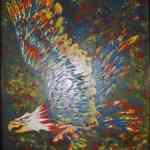 Eagle - oils on hardboard - Kelly Goss Art